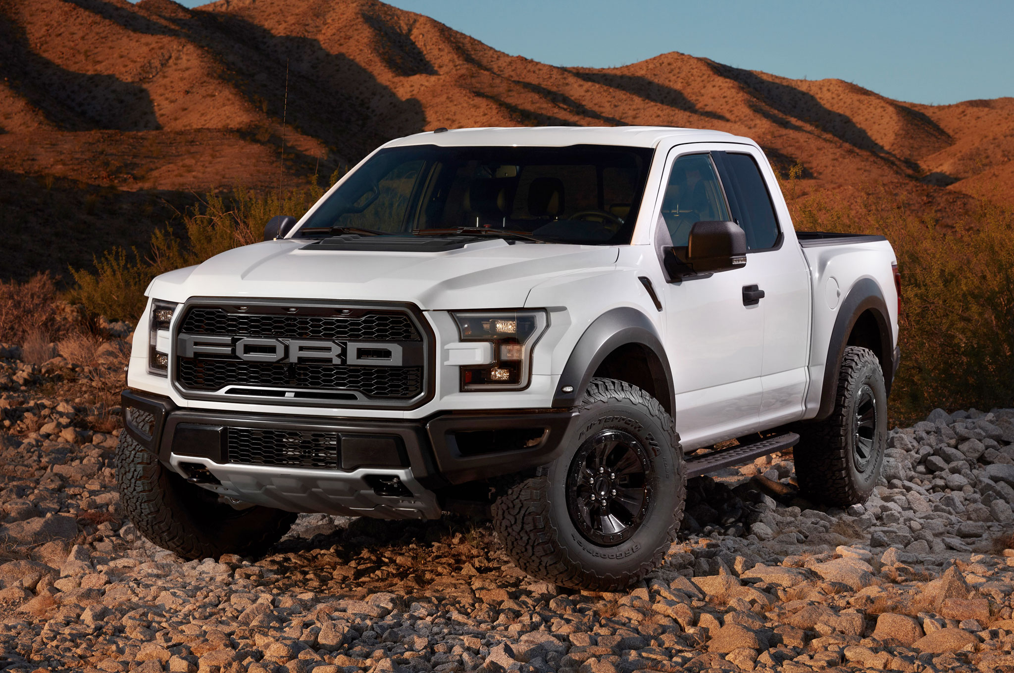 2017 ford f 150 raptor pricing leaked may start around 49 520. Black Bedroom Furniture Sets. Home Design Ideas