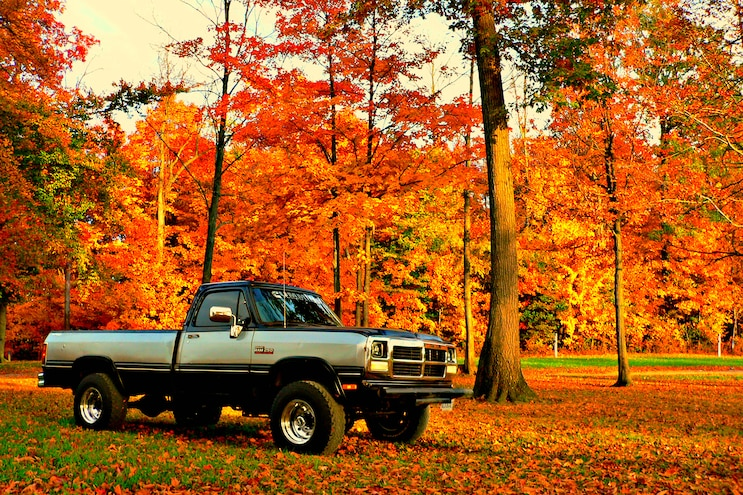 Blow-Off - Want to get your truck in Diesel Power?