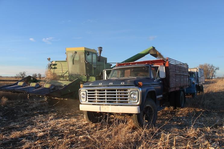 Vintage Harvest Trucks Ford