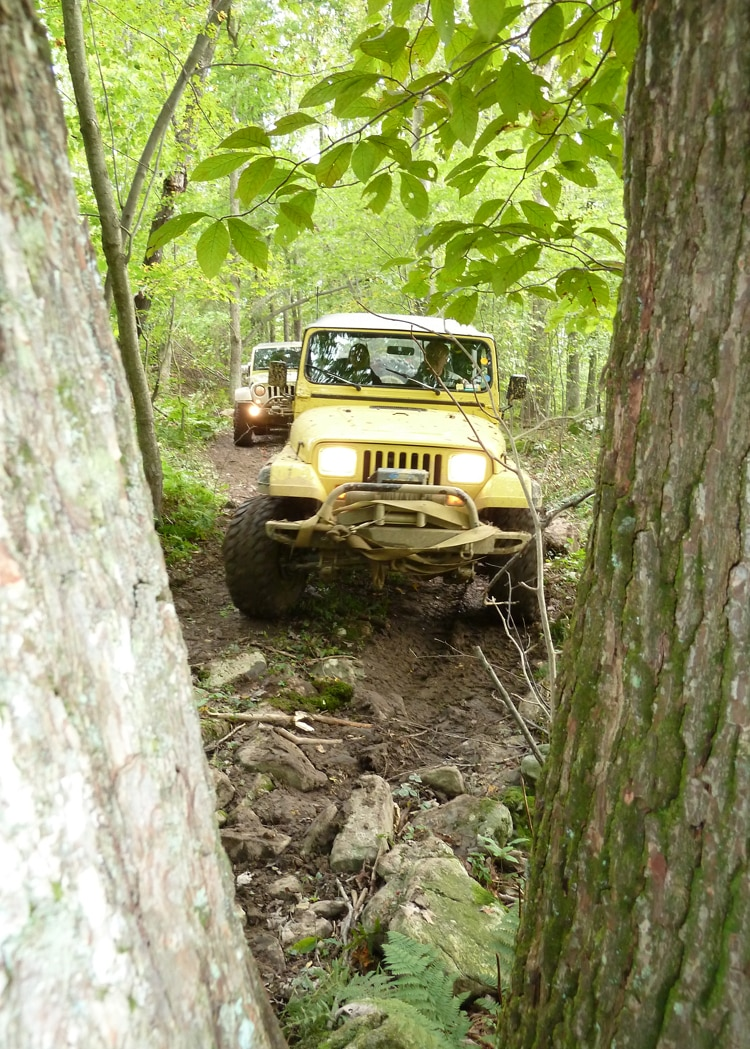 2011 Jeep Jamboree Front View Through The Trees