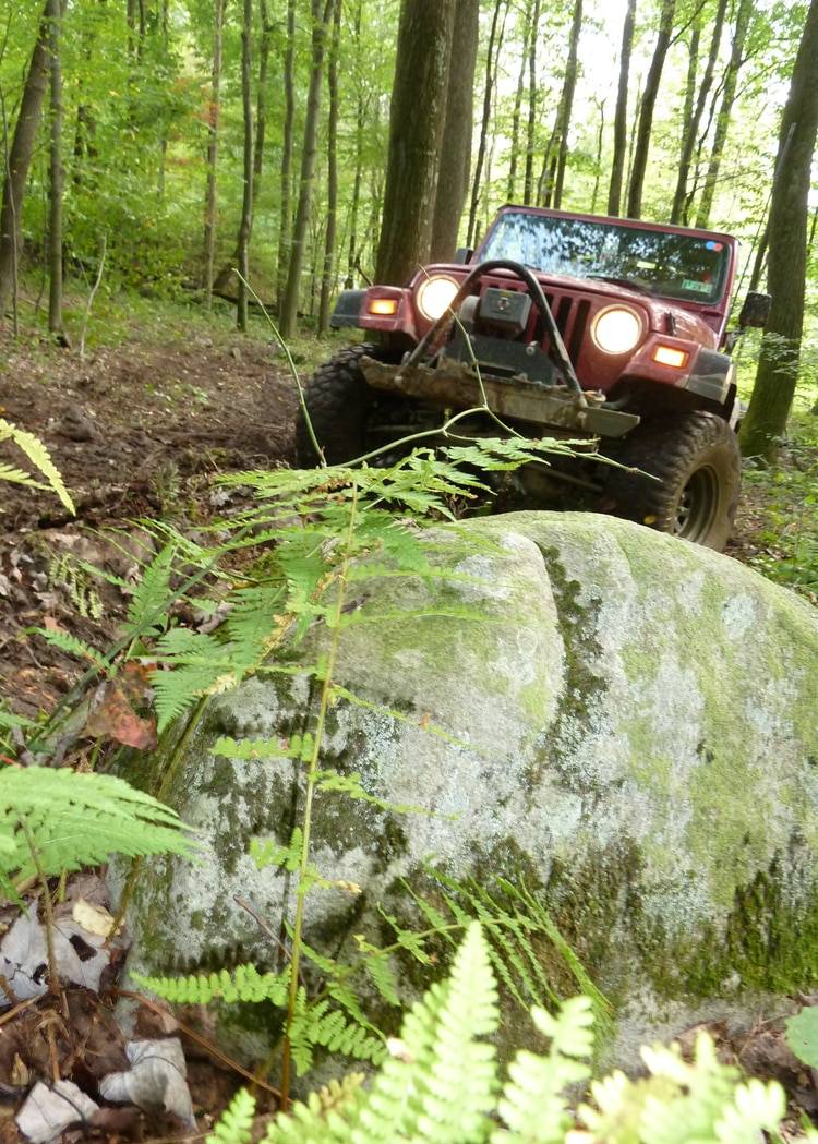 2011 Jeep Jamboree A Rock And A Jeep