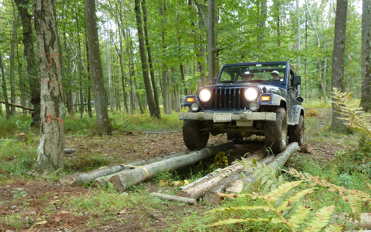 2011 Jeep Jamboree Over A=Log=Bridge