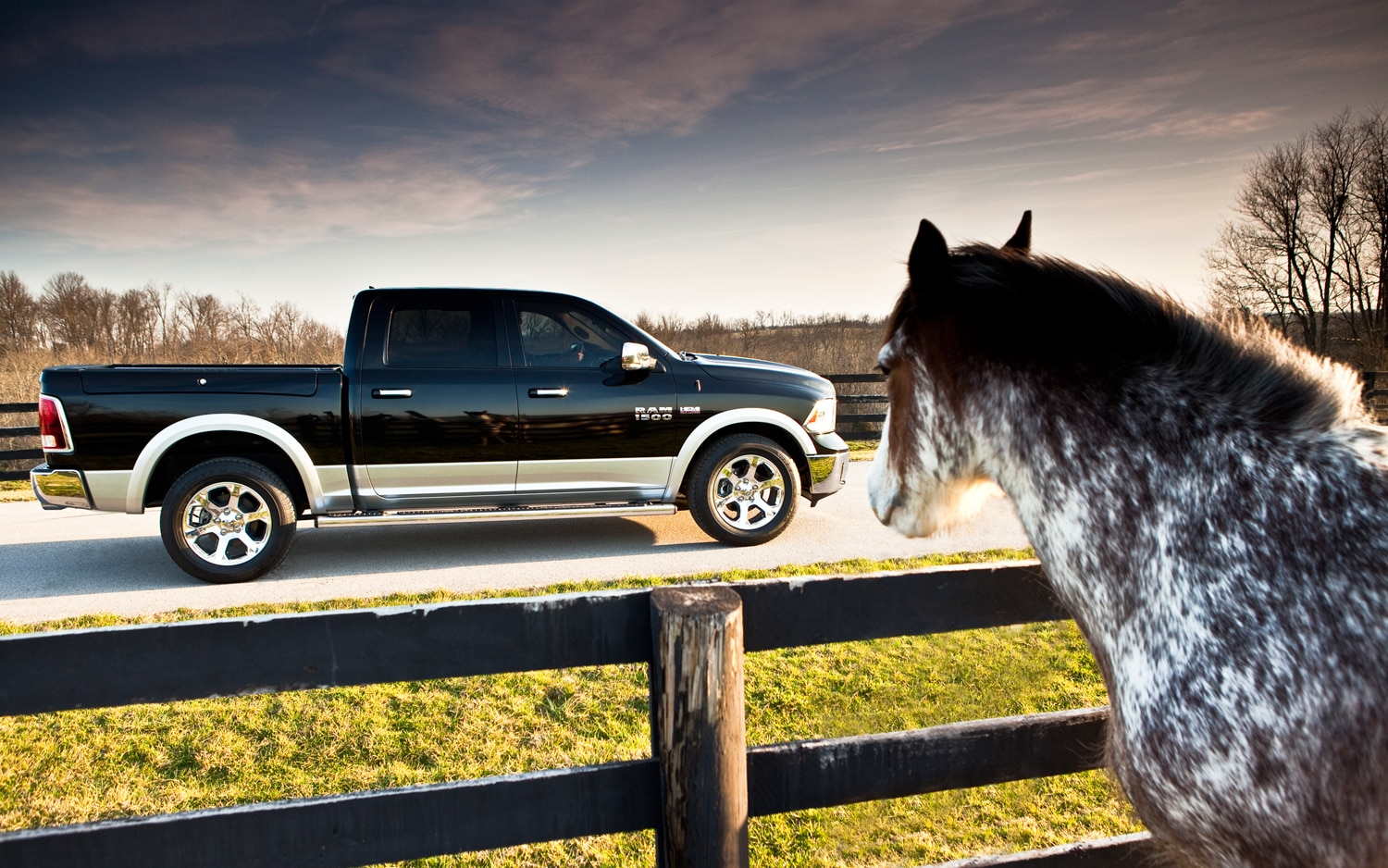 2013 Ram 1500 Side View With Horse