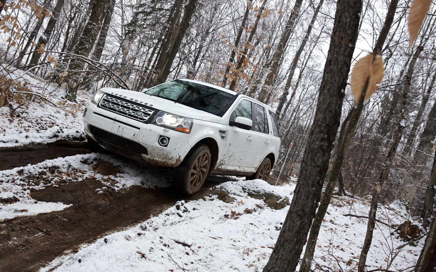 2013 Land Rover LR2 Front Three Quarters
