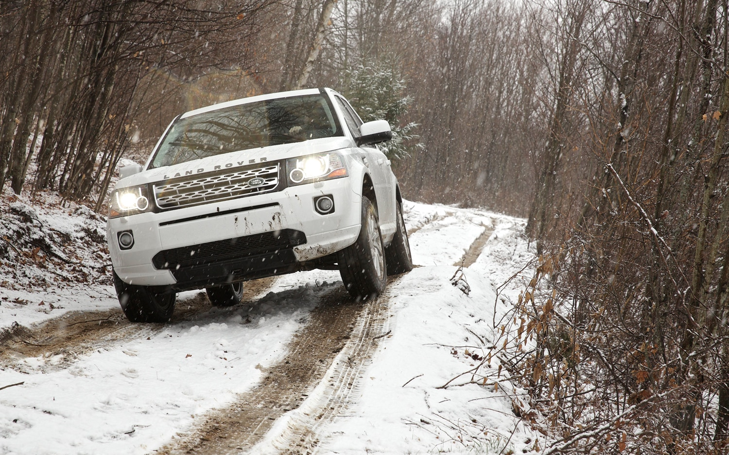 2013 Land Rover LR2 Front End Off Road 4