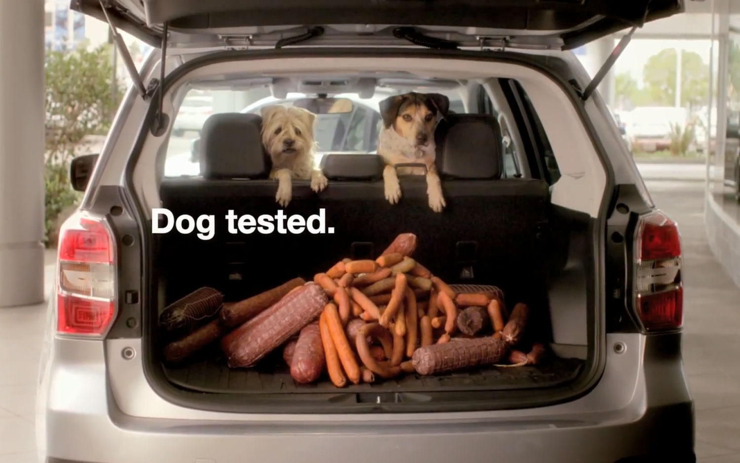 2014 Subaru Forester Sausages Dog Tested