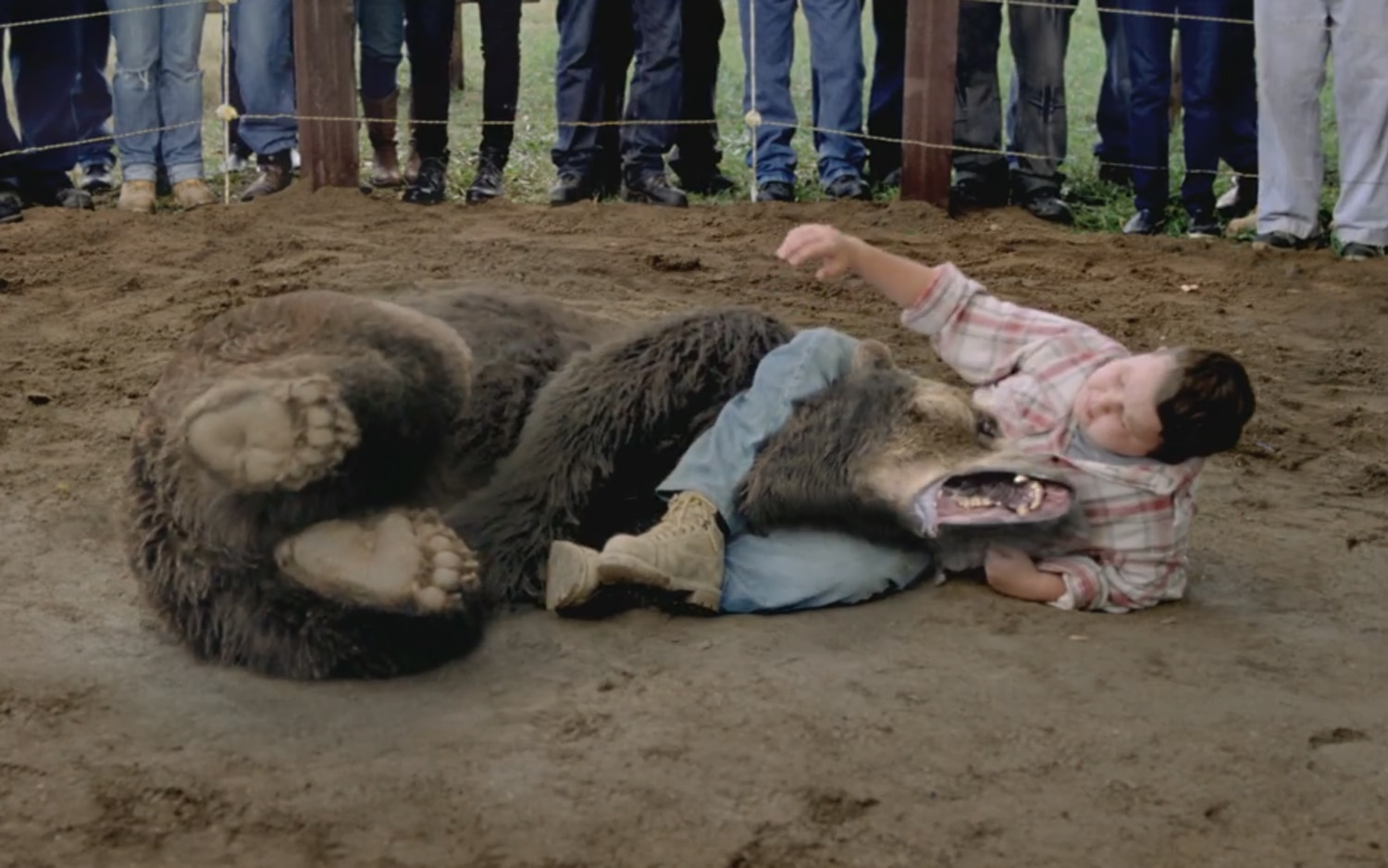 Kid Wrestling Bear In Hyundai Super Bowl Ad