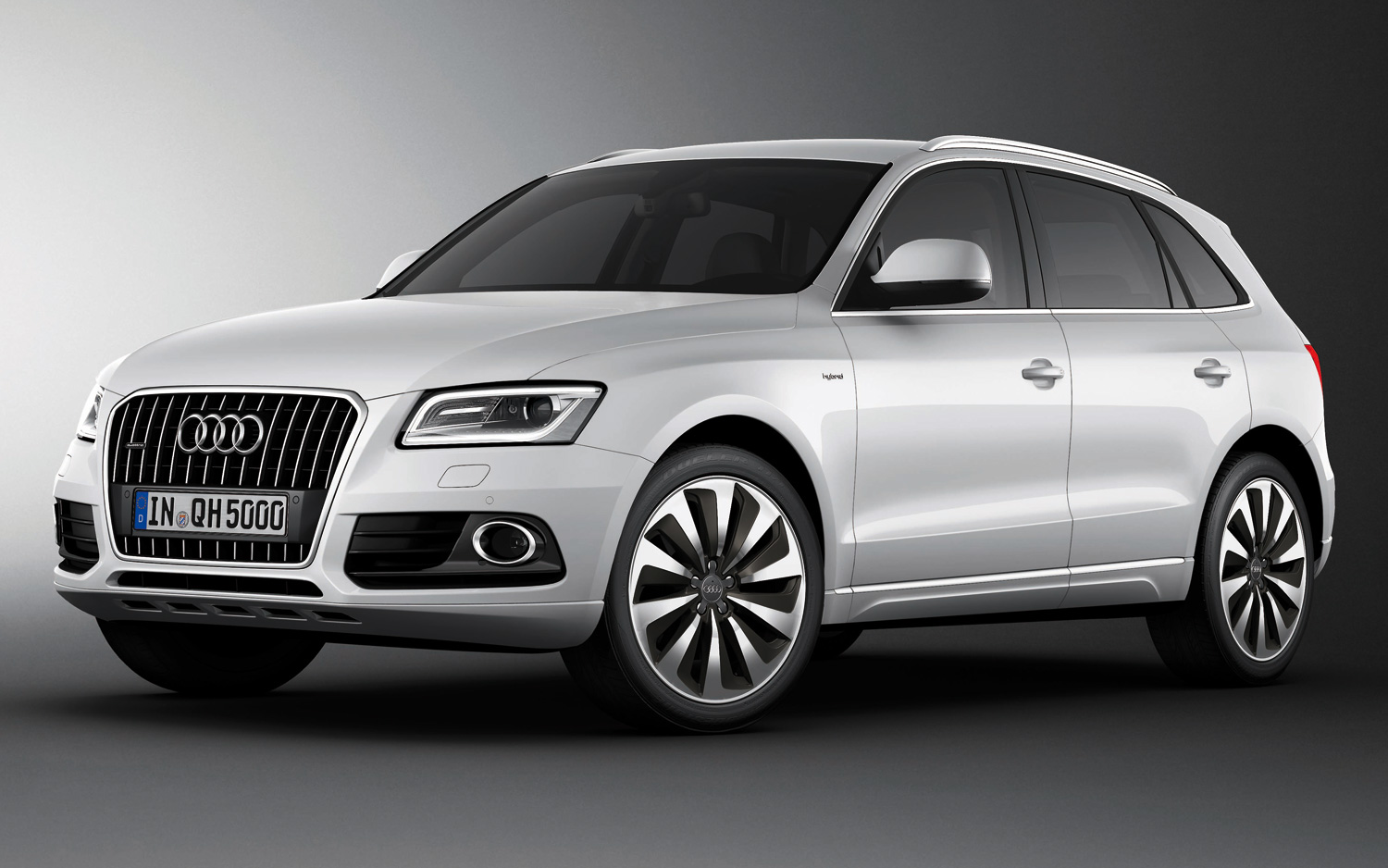 Build Audi Q5 >> Audi To Build All Electric Q5 In Mexico Photo Image Gallery